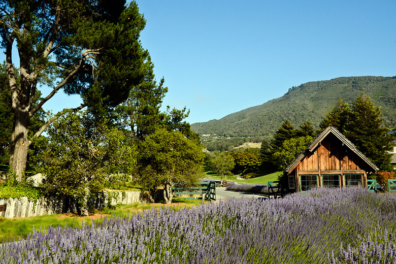 Carmel Valley Ranch